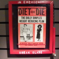 Diet or Die by Melissa Ptak Moline